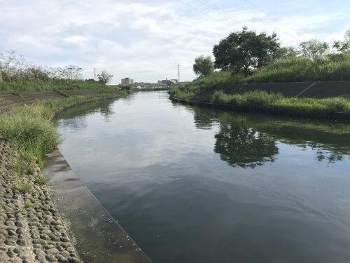 荒川温排水