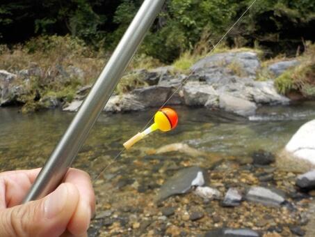 相模川水系桂川で小物釣り