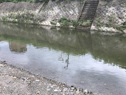 小畑川での釣り