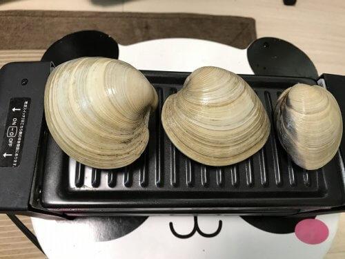 オ一人焼肉名人でホンビノス貝を焼く