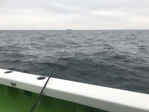 東京湾シロギス釣り