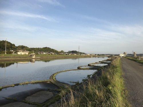 巴川・鉾田川流れ込み周辺