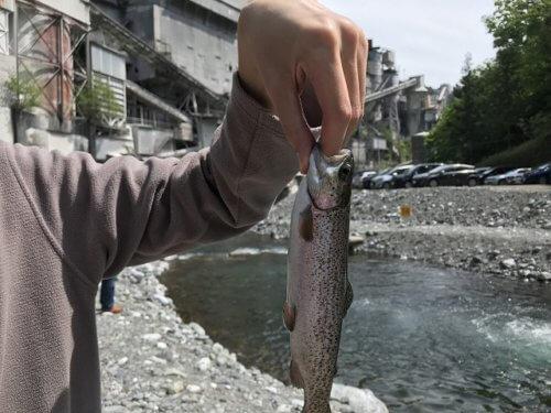 氷川国際ます釣場のニジマス