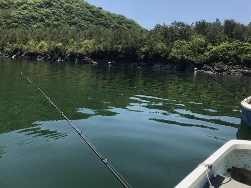 西湖でのヒメマス釣り