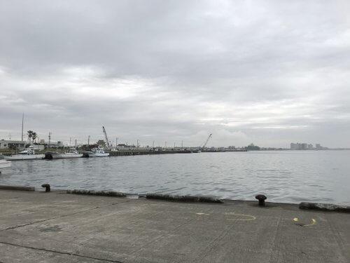 新居漁港(浜名漁業)