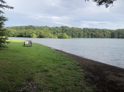 一碧湖のバス釣り