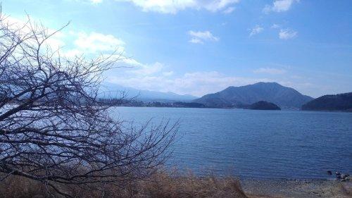 河口湖のバス釣り