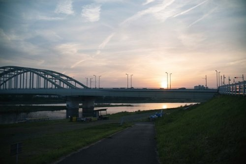 【タマゾン】多摩川