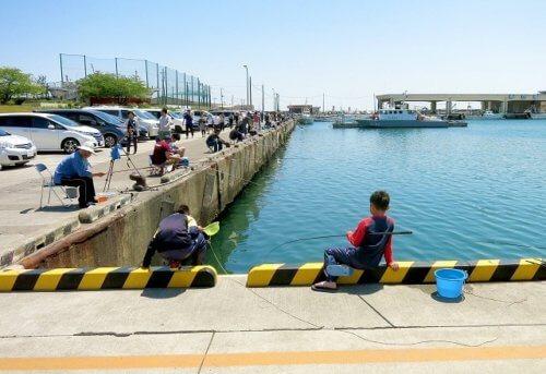 防波堤で海釣り