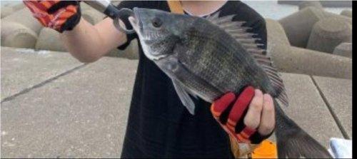 那珂湊港での釣り