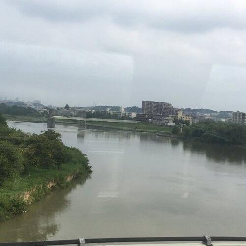 多摩川のスモールマウスバス
