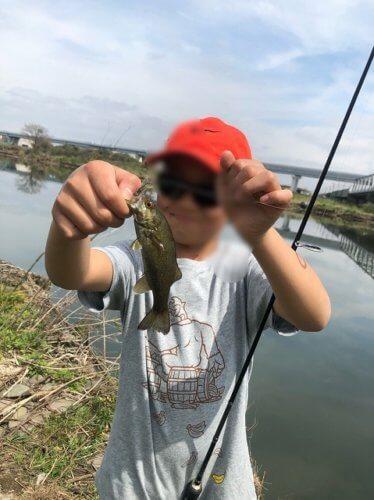 相模川でカジカ釣り